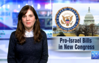 In the News: David Harris on Rep. Tlaib