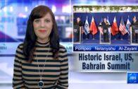 Jewish Books: Author Meryl Ain